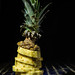 pineapple by le cabri