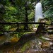 St Michaels Falls 2    North Lawson by David Marriott - Sydney