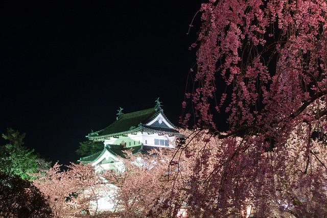 Hirosaki night 4