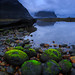 Radioactive Green @ Milford Sound by awilkin