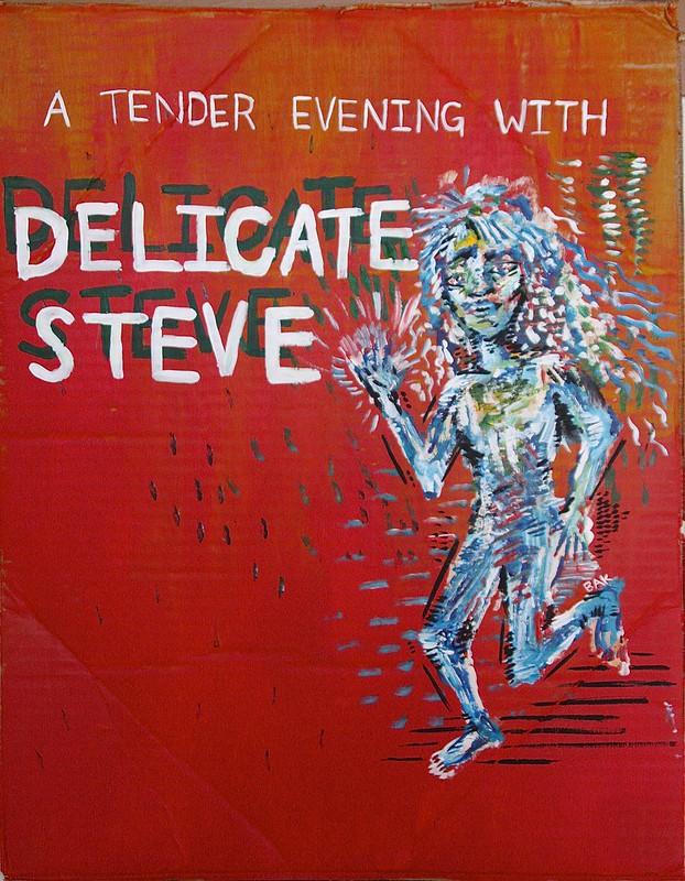 Delicate Steve poster