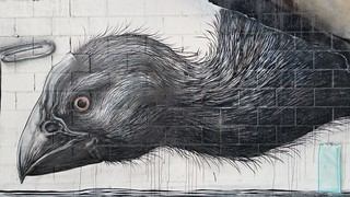 ROA...Christchurch, New Zealand...