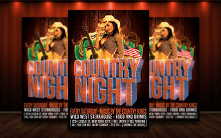 Country Flyer 3D
