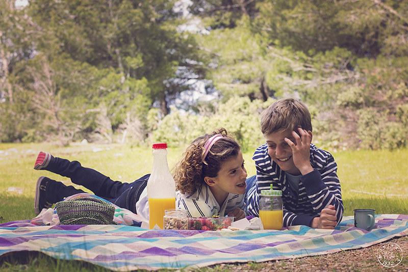 un dia de picnic