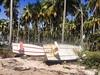 Boats on the beach - Praia dos Carneiros, Pernambuco