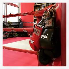 boxingring
