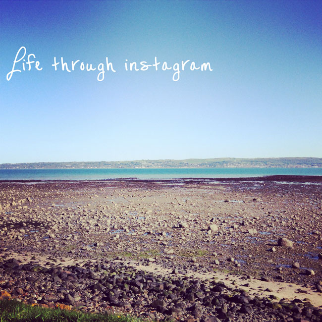 instagram-magpie-girl