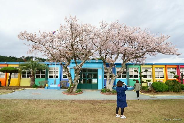 Photo Sakura