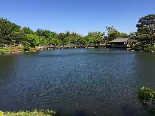 昭和の日の昭和記念公園 日本庭園