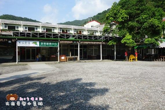 頭城農場環境 (10).JPG
