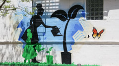 Watering plants Street art nyc