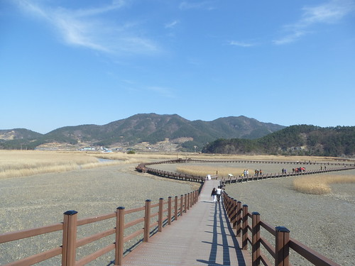 Co-Suncheon-Parc ecologique (12)