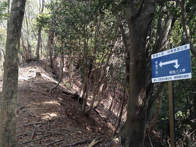 釈迦ヶ岳 中尾根登山道