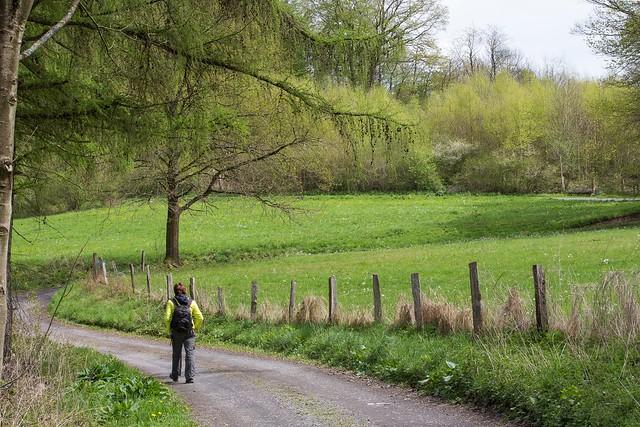 Frühling im Thiergarten 2015