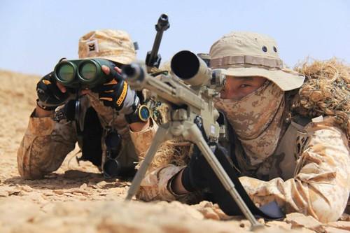 ROK Desert digital uniform 17029240849_b10f59d192