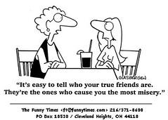 Very funny Humor Cartoon Jokes on Friends