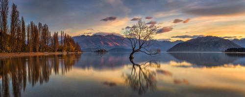 Wanaka Lake NZ Sunrise