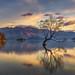 Wanaka Lake NZ Sunrise by Bjorn Baklien