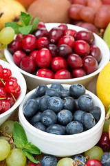 fresh blueberries, berries and fruits, vertical