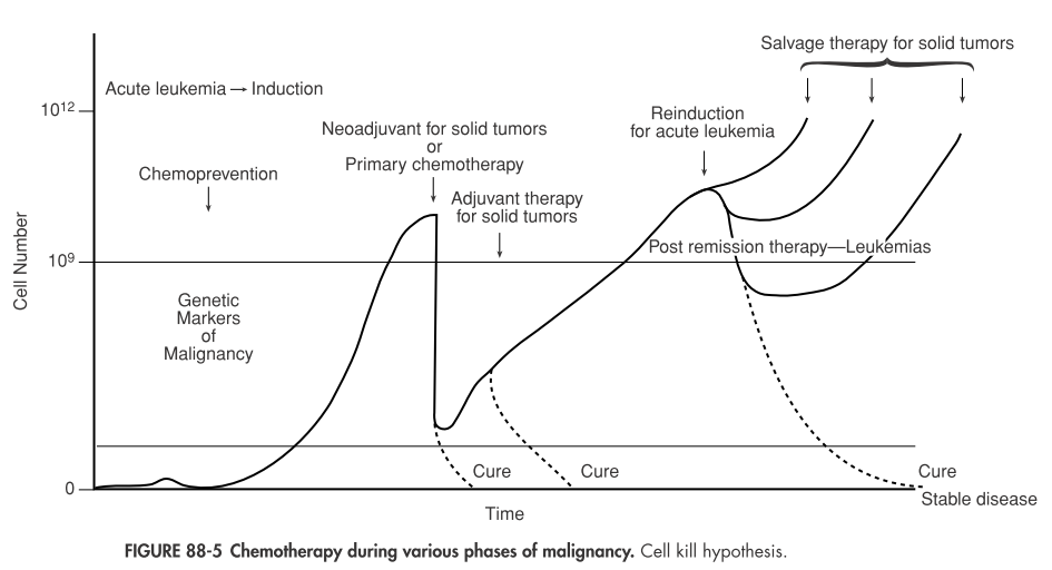 FIGURE 88-5 Chemotherapy during various phases of malignancy.