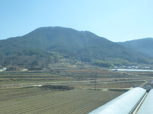 Co-Gwangju-Suncheon-bus (8)