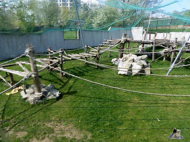 Zoo Bratislava 18.04.2015 69