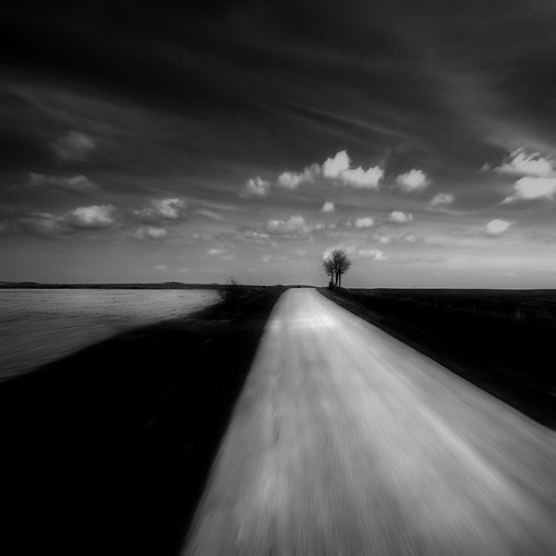 abscapes/ paysage reduced VIII