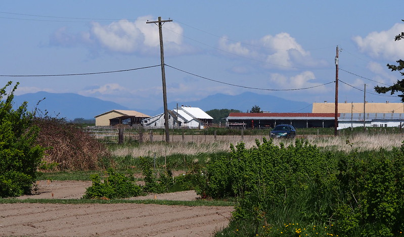 Farms: Just north of Stanwood