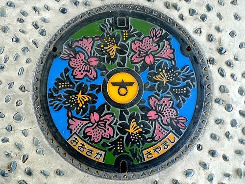 Osakasayama Osaka, manhole cover (大阪府大阪狭山市のマンホール)