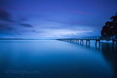 muzzpix-nz posted a photo:Facebook      500px    WebsiteIt is such a long way to the end of the wharf at Kauri Point  . And only a hand rail on one side . A bit disconcerting ...
