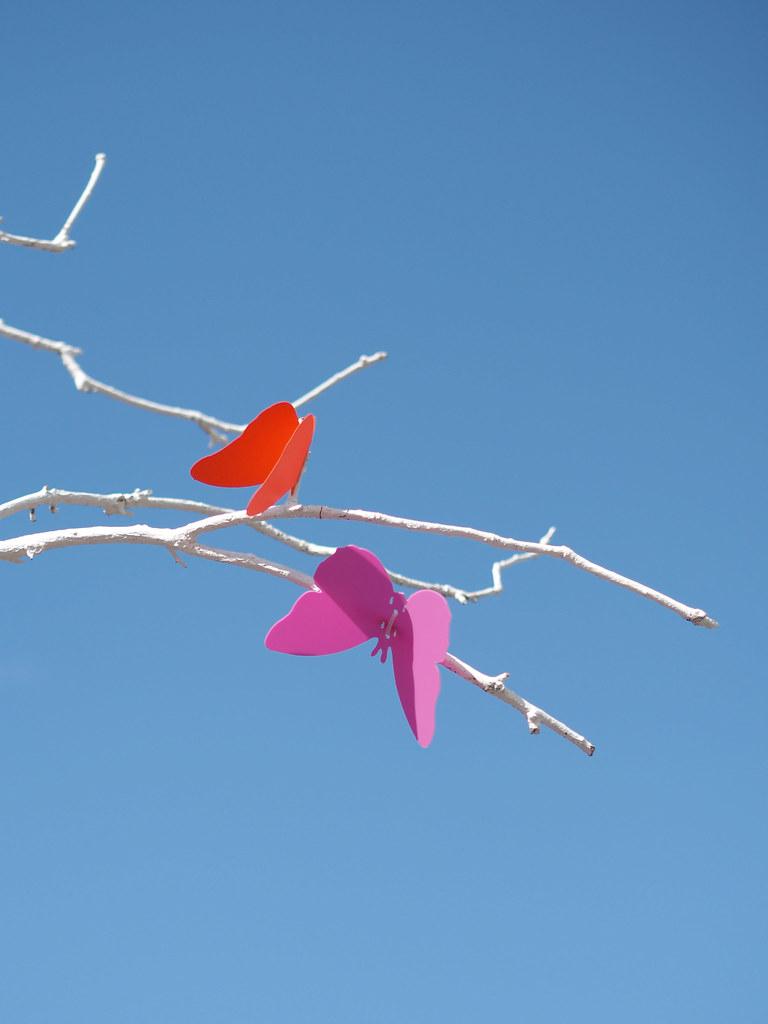 bicester-butterflies