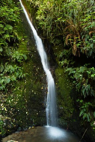 Acland Falls