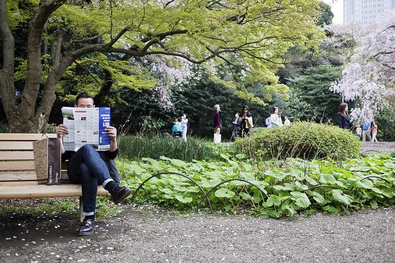 Shinjuku gyoen, Tokyo, Japan_IMG_4889