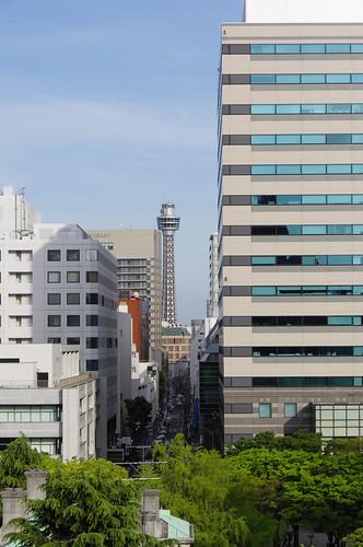 神奈川県庁本庁舎からマリンタワー