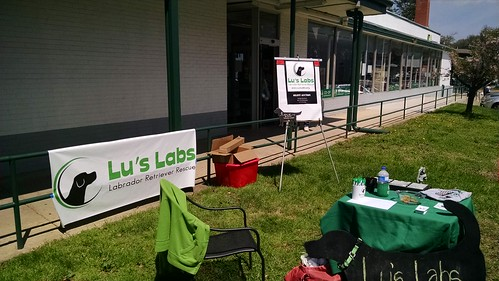 Lu's Labs at the Greenbelt Mini-Maker Faire