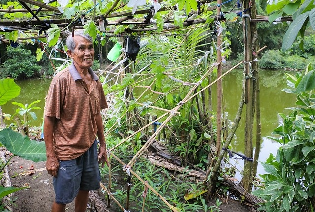 Lorenzo Rances works on his vegetable garden located in his own backyard in Galas, Diplog, Zamboanga del Norte, Philippines. Photo by Angelo Arboleda, WorldFish