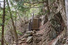 大岳山への岩道