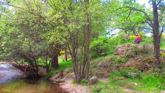 2015_05_23_Pesquerías_071