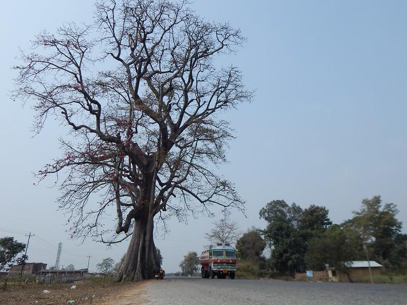 150223 Da Silicudi a Guwahati a Dimapur (23) (2304 x 1728)