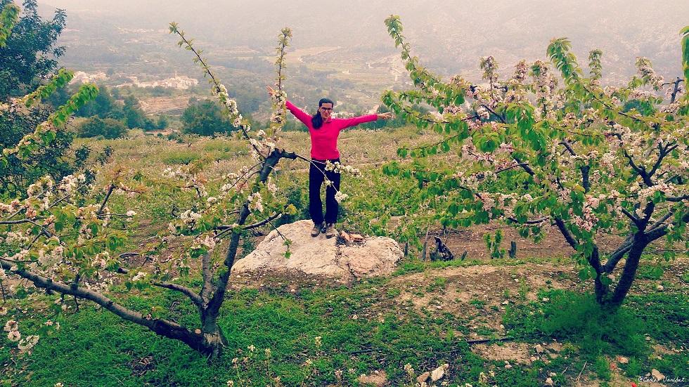 Valle de la Gallinera_Cerezos en Flor (15)