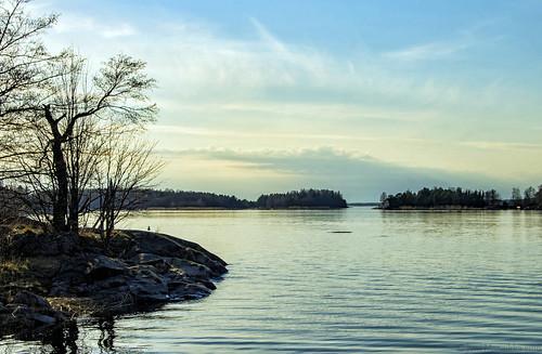 trees sea sky nature clouds finland landscape spring outdoor branches balticsea shore rauma archipelago 18125mmf3556dc