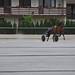 Kasaške dirke v Komendi 29.05.2016 Razno