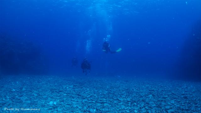 ブルーウォーターの海をのんびり遊泳♪