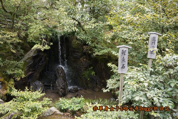 日本京都金閣寺17