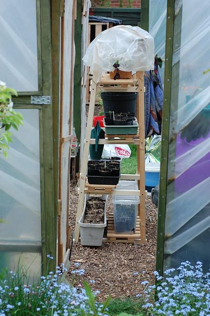Shelving unit viewed through door way