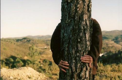 Abrázame - dijo el árbol. Y papá lo hizo. II