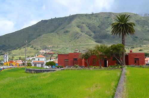 Rural setting, Tegueste, Tenerife