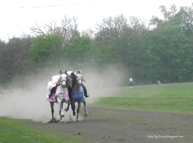 Конные игрища в Дибровке