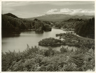 Lake Mangamahoe, New Plymouth (1954)