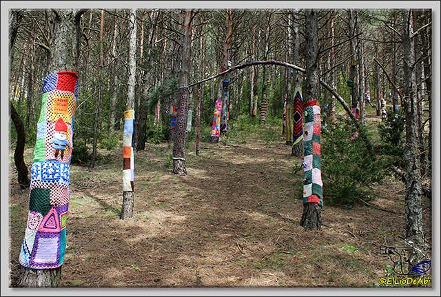 8 Ruta de los Duendes y Bosque encantado